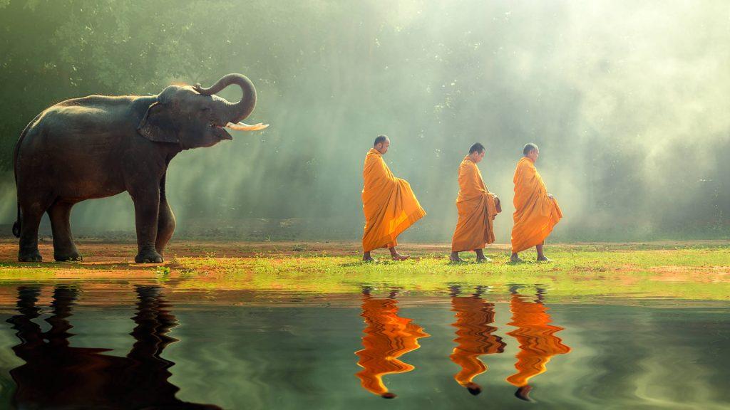17 cosas que no sabias de Tailandia